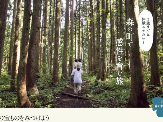 3歳までに体験させたい…森の町で感性を育む旅
