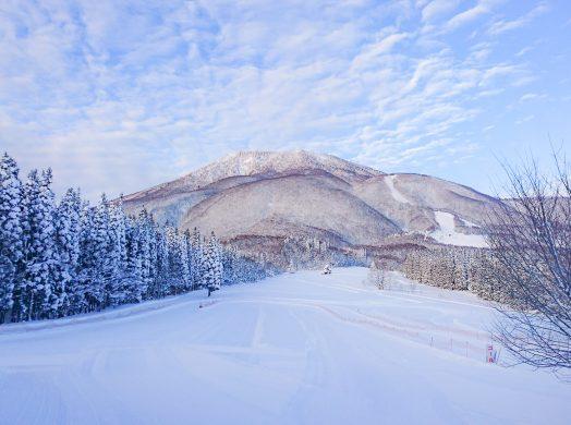 上達への近道!黒姫スキー学校と検定パック