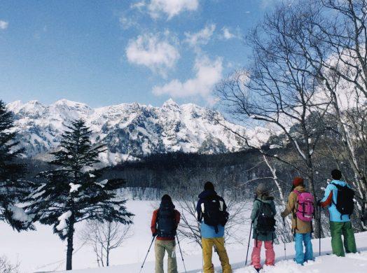 冬の森遊び!楽しみ方いろいろな雪遊び⛄